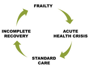 The Frailty Cycle
